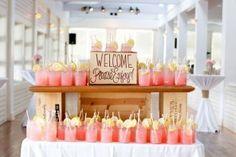 wedding drinks,peach coral and grey wedding palette | fabmood.com