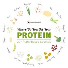 20+ Plant-Based Protein Sources...  Seasoned vegans and vegetarians know the drill – you spend 0% of your time searching for plant-based sources of protein (because they're everywhere) and 100% of your time explaining to people where you get your protein.  #picsandpalettes #vegan #abesmarket