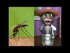 मच्छर चालीसा सुन कर आपका हॅसते हॅसते पेट में दर्द हो जाएगा। - YouTube