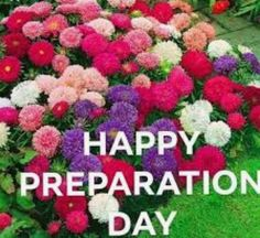Happy Sabbath, Day, Plants, Happy Saturday, Flora, Plant
