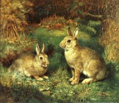 original paintings of rabbits | rabbits by henry carter gl wild rabbits shown in the forest circa 1880 ...