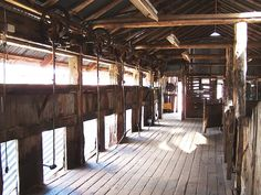 old corrugated iron shearing shed - Google Search