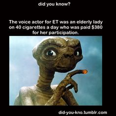 @Rachel Wells...I think I know a relative of yours who maybe did the voice..lol!