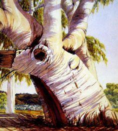 Albert Namatjira, Old Man Ghost Gum, Ellery Creek (near Hermannsburg) early watercolour, signed lower right x cm Australian Artists, Australia Colours, Aboriginal Art, Australian Art, Art Auction, Tree Art, Australian Painting, Life Art, Love Art