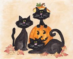 Jack Cats II