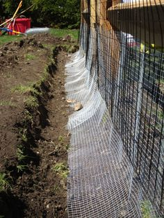 Hardware mesh is placed in a trench around the perimeter at an angle to keep burrowers out, and then plastic coated galvanized wire fencing (4 feet high) is nailed on the outside of the fence, including on the gate. The hardware mesh overlaps the wire fencing about 12 inches.: