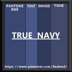 PANTONE SEASONAL COLOR SWATCH TRUE NAVY