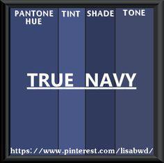 PANTONE SEASONAL COLOR SWATCH TRUE NAVY