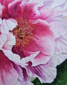 Peony - Watercolor on paper