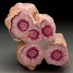 Rhodocrosite flowers from Capillitas mine, Argentina Photo: Horváth Tünde