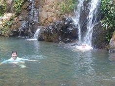 In the rainforest near Colon, Panama