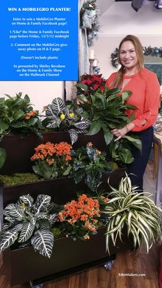 The Home & Family Show on Hallmark Channel is giving away amazing products during the upcoming weeks leading to  Christmas. I was asked to select my favorite garden product to give aw...