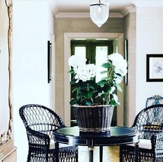 Style doesn't have to be ! We ❤ @melissa_penfold 's message about not needing a lot of to create a beautiful space that works for YOU. Inexpensive wicker chairs take on new life indoors with a coat of black paint. Add a small table and a formerly dead space becomes the perfect spot for reading a book and having a quiet cup ☕️Right on as usual MP! And PS: Potted #hydrangeas will last for months in a sunny spot if you  a little each day!