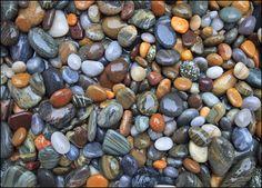 """Earth Colors""  New Hampshire coast"