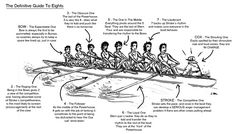 in an 8+ the guide to what each seat does and says. #rowing
