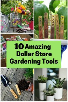 Having a garden at your backyard is not only for beautification but also practical reasons. If you are a newbie, don't forget to have these gardening tools.
