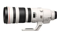 Canon EF 200-400mm f/4 IS USM Extender 1.4x