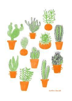 Caroline Dowsett — Cacti