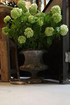 19th century vase – une Âme en plus // Antiquités de charme // Décors et curiosités