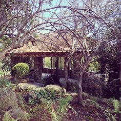 Zilker Botanical Gardens in Austin, TX