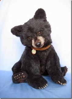 Realistic style teddy bear, by the boundlessly talented Joanne Livingston of Desertmountainbear