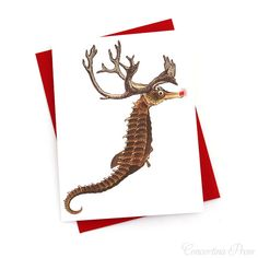 Seahorse Reindeer Holiday Cards  Holiday Card by ConcertinaPress