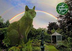 Cat topiary.