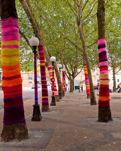 """Knitted Trees"": an art installation by Suzanne Tidwell in Seattle, Washington."