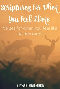 Verses For When You Feel Lonely - What does the Bible say about loneliness? What does God say about being lonely? Where is God when I feel alone?