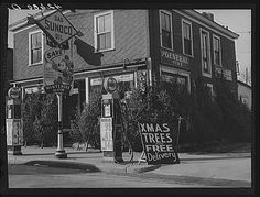 Vintage Christmas Photograph ~ Christmas Trees for Sale * Woonsocket, RI * ©December, 1940