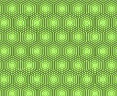 Bold Green Hexagon Turtle Pattern - http://www.dawnbrushes.com/bold-green-hexagon-turtle-pattern/