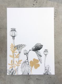 Golden Garden Series by Cloud Nine Creative