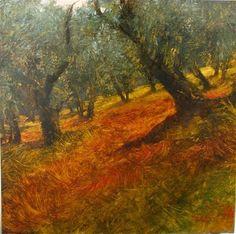 David Dunlop - Tuscan Olive Grove