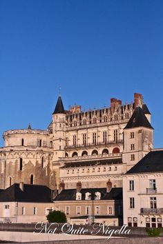 Chateau Amboise, France. Anne Bolyen spent time here while in the service of Queen Claude and Leonardo Di Vinci lived, died and was buried here.