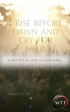 "July 4. ""I rise before dawn and cry for help; I have put my HOPE in your word. #Psalm119.147"