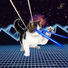 Laser Cats! App Reviews & Download - Games App Rankings! Cat Laser, Local Banks, Alley Cat, Ios 7, Cursed Child, Game App, Best Apps, News Games, Apple Tv
