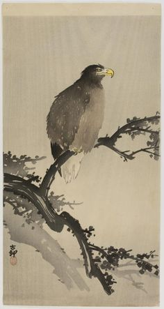 Falcon on a Branch. Ikeda Koson (池田 孤邨, Echigo 1801 – 1866). Japanese hanging scroll. Nineteenth century. Philadelphia Museum of Art.
