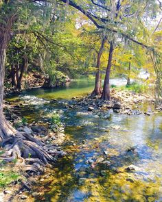 Guadalupe River behind The Gristmill Bar and Grill in New Braunfels, Tx - Imgur