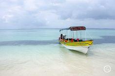 Błękit Zapatilli #panama #beach