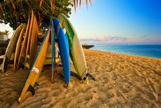 Surfing today? Why not surf in Hawaii with a mate.   Win a Trip to Hawaii + 10,000 cash.    #hawaii #win