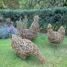 Willow chicken family by Gary Brown.
