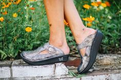 Alegria Shoes Classic Clog in 'Posh Pewter' from Alegria Shoe Shop