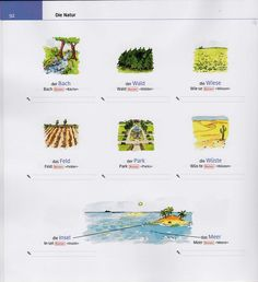Bildwörterbuch: Die Natur 2