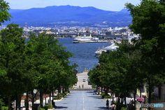 まるごとお役立ち函館観光ガイドエリアで分かる賢く楽しむ