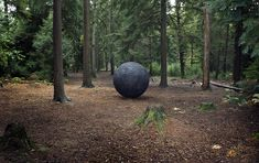 Created by Semiconductor (Ruth Jarman and Joe Gerhardt), Cosmos is a two metre spherical wooden sculpture that has been formed from scientific data. Sculpture Art, Sculptures, Outdoor Sculpture, Real Life, Age Of Discovery, Woodland Art, New Media Art, Film Inspiration, Creative Inspiration