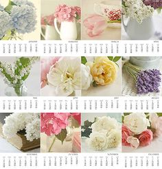 2012 Calendar, Shabby Chic Flowers, 5x7 Desk Calendar, Photography