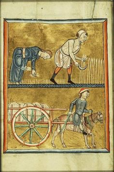 Reaping, gleaning, and harvesting c.1180 from the Fécamp Psalter
