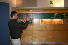 Invasore all'attacco. PraeHistoric Click. #InvasioniDigitali al Museo Civico di Maglie. 27 aprile 2014