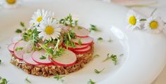 #close up #cuisine #decorate #dish #edible #flowers #food #healthy #herb #ingredient #ingredients #meal #nutrition #plate #radishes #raw #red #vegetable