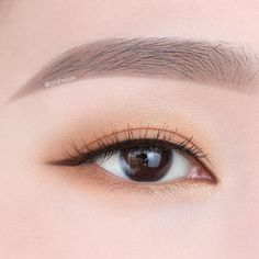 Look at the webpage to see more about step by step eye makeup Simple Eye Makeup, Natural Eye Makeup, Natural Eyes, Makeup Trends, Makeup Tips, Korean Eye Makeup, Asian Makeup, Eye Makeup Brushes, Makeup Eyeshadow